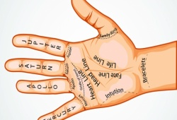 Palm Reading Lines Meanings