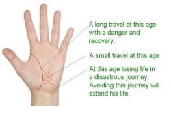 How To Do Palm Reading For Traveling Abroad